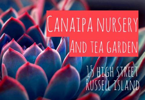 Caniapa Nursery